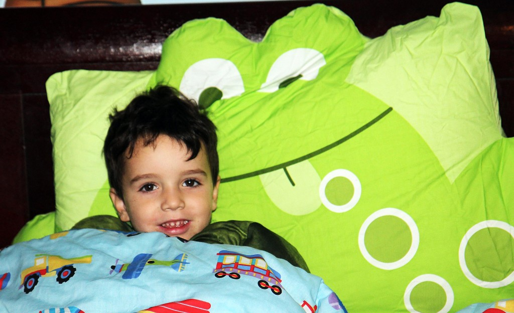 The Company Store Company Kids Pillowcase Friends Review