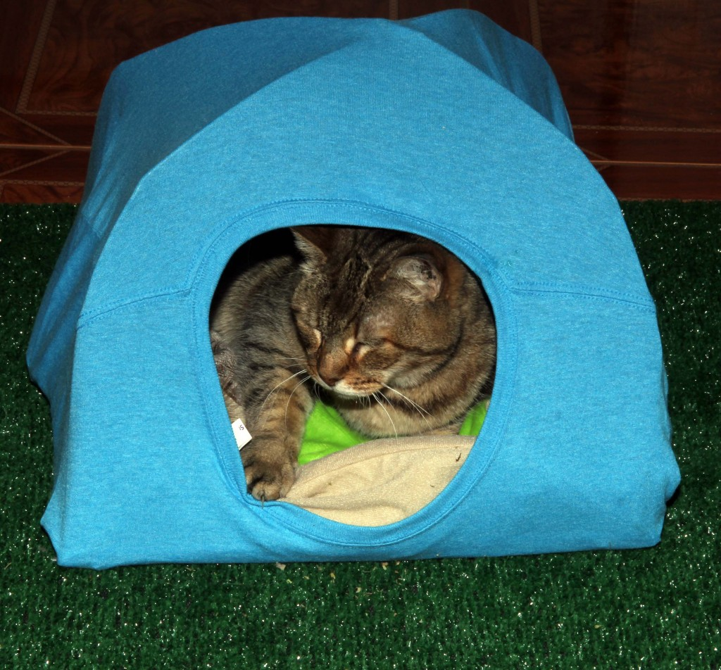 Spoil your cat with this easy to make cat bed for How to make a cat bed easy